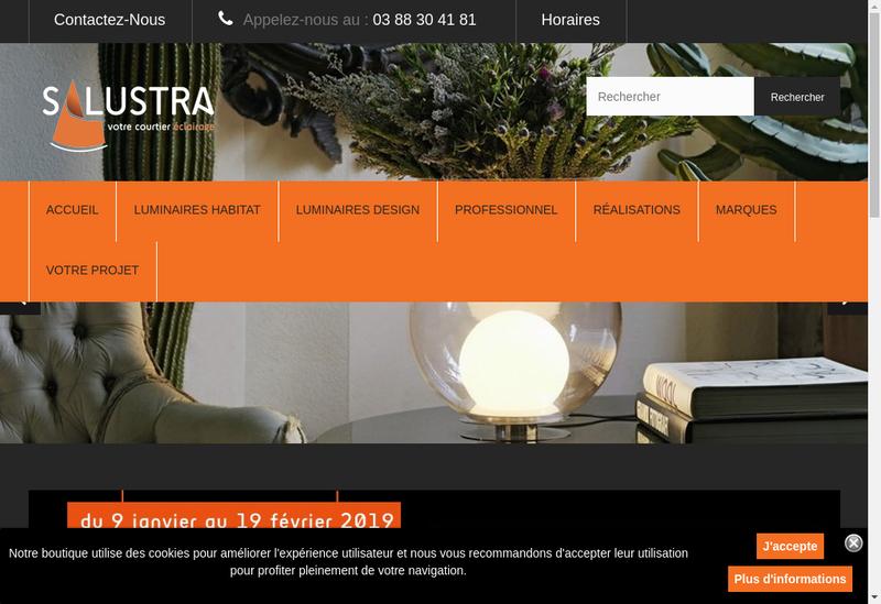 Capture d'écran du site de Salustra SA