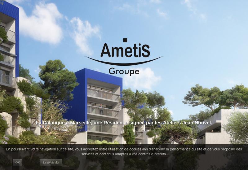 Capture d'écran du site de Ametis