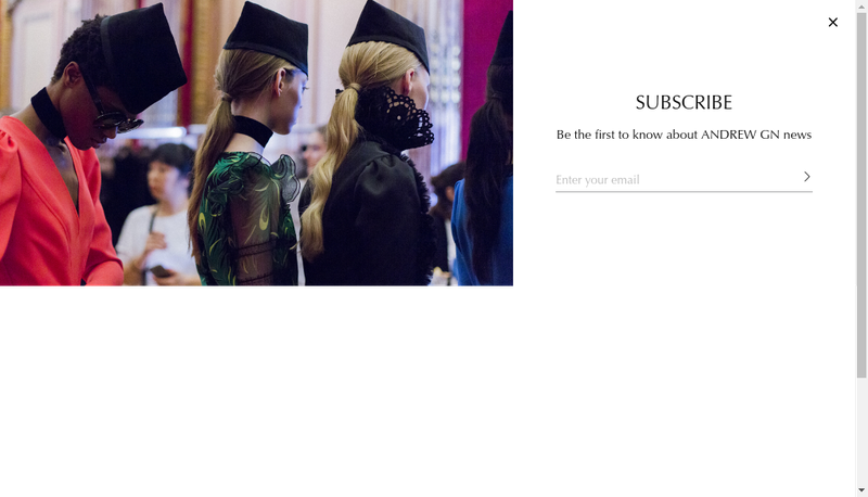 Capture d'écran du site de SARL Andrew Gn