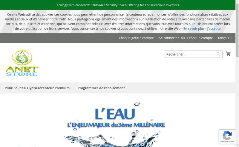Capture d'écran du site de Anet International Group
