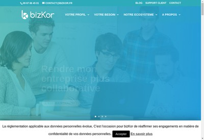 Site internet de Bizkor