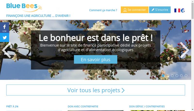 Capture d'écran du site de Blue Bees