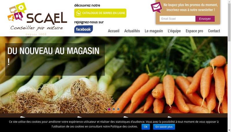 Capture d'écran du site de SAS Scael Serbe