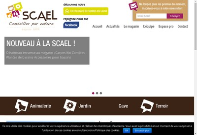 Site internet de SAS Scael Serbe