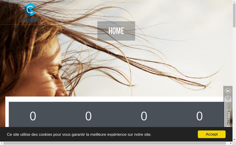 Capture d'écran du site de Formatis