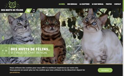 Site internet de Des Nuits de Felins