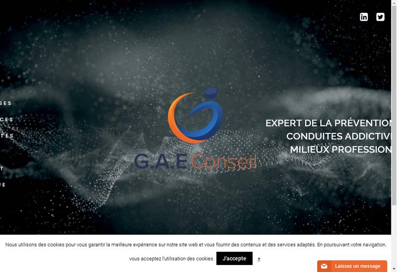 Capture d'écran du site de GAE Conseil
