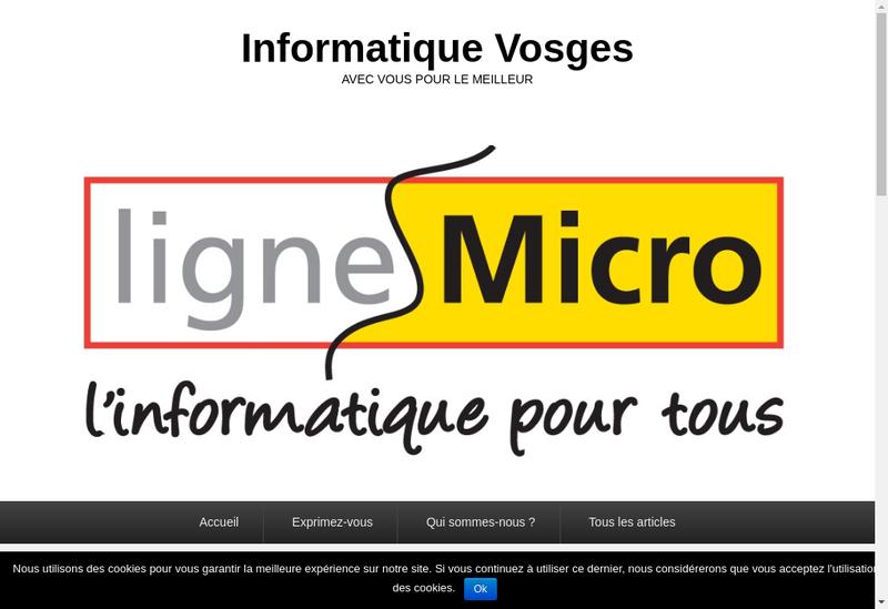 Capture d'écran du site de Ligne Micro