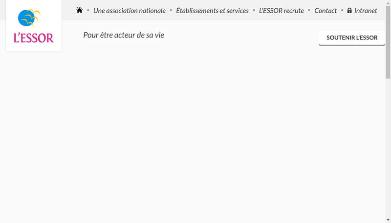 Capture d'écran du site de L'Essor