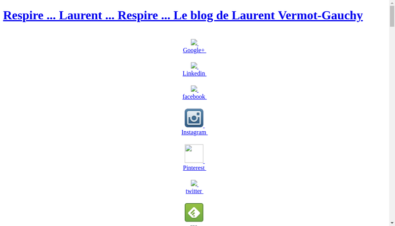 Capture d'écran du site de Laurent Vermot-Gauchy