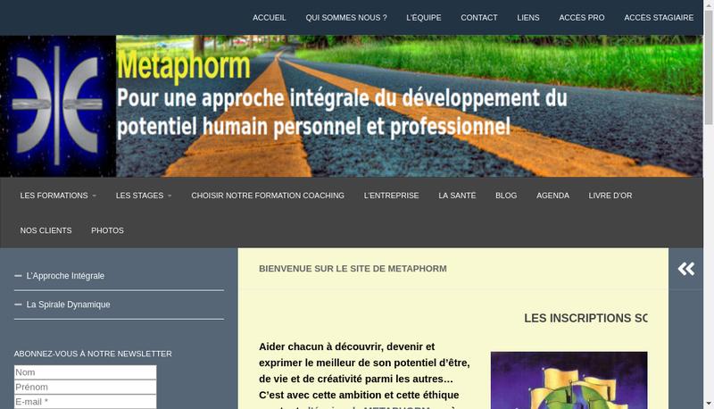 Capture d'écran du site de Metaphorm