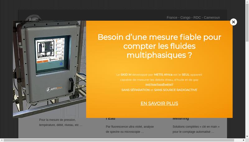 Capture d'écran du site de Metis Africa