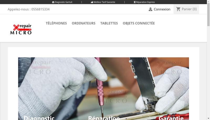 Capture d'écran du site de Micro Repair