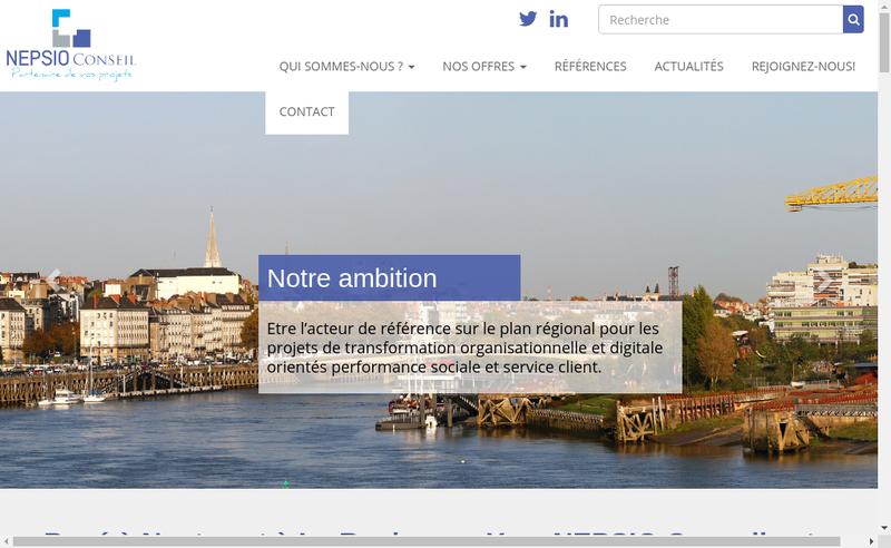 Capture d'écran du site de Nepsio Conseil