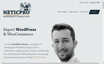 Site internet de Neticpro