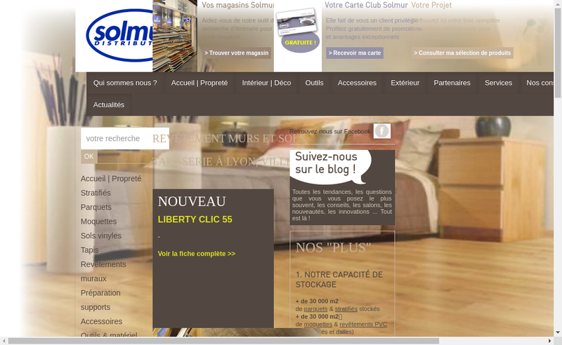 Capture d'écran du site de Solmur Distribution