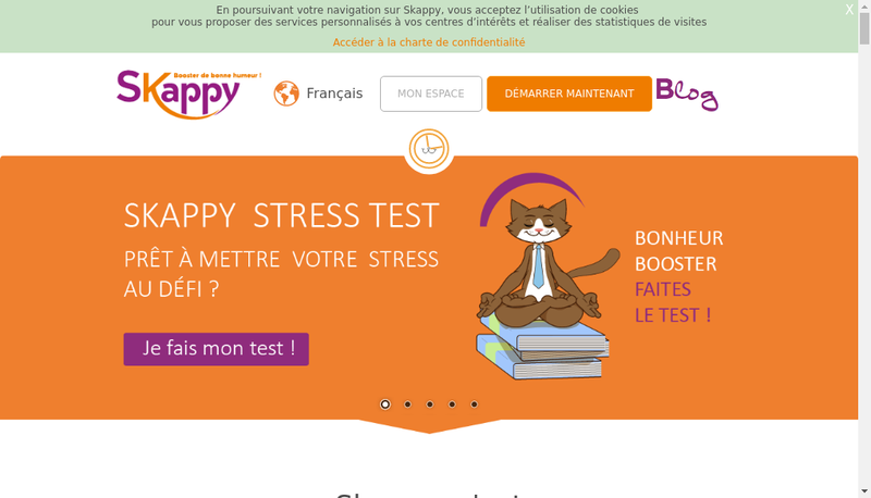Capture d'écran du site de Skappy