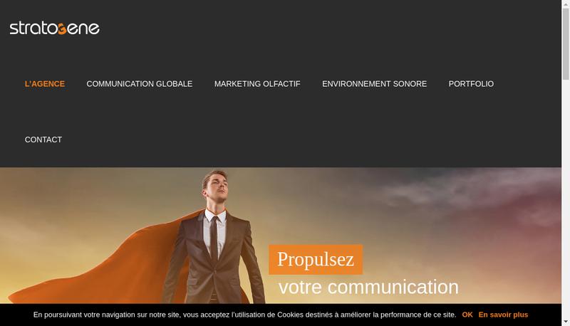 Capture d'écran du site de Stratogene