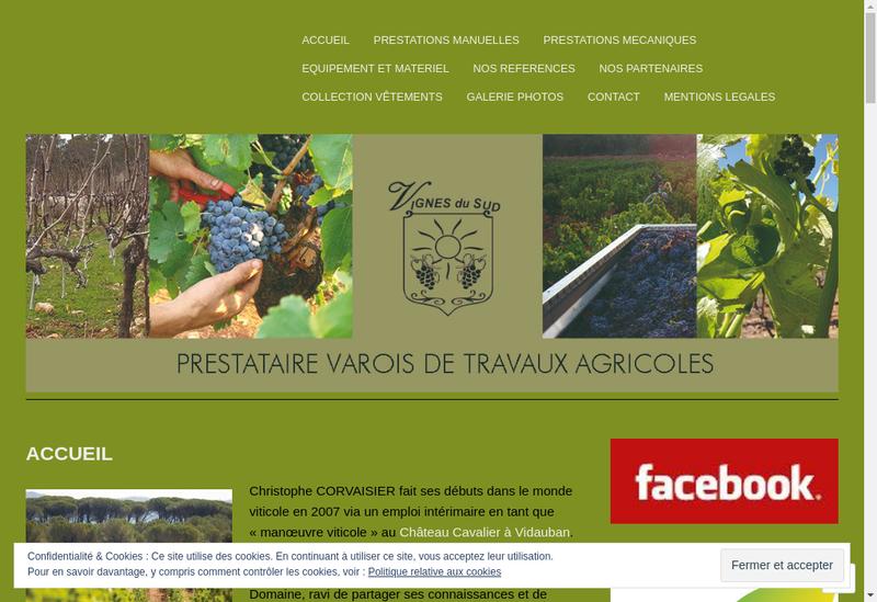 Capture d'écran du site de Vignes du Sud
