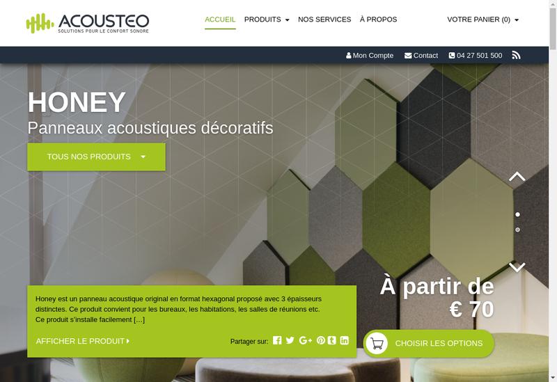 Capture d'écran du site de Acousteo