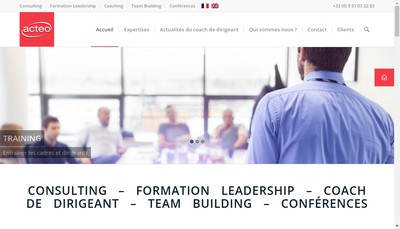 Site internet de Acteo Consulting