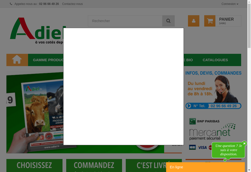 Capture d'écran du site de Adiel