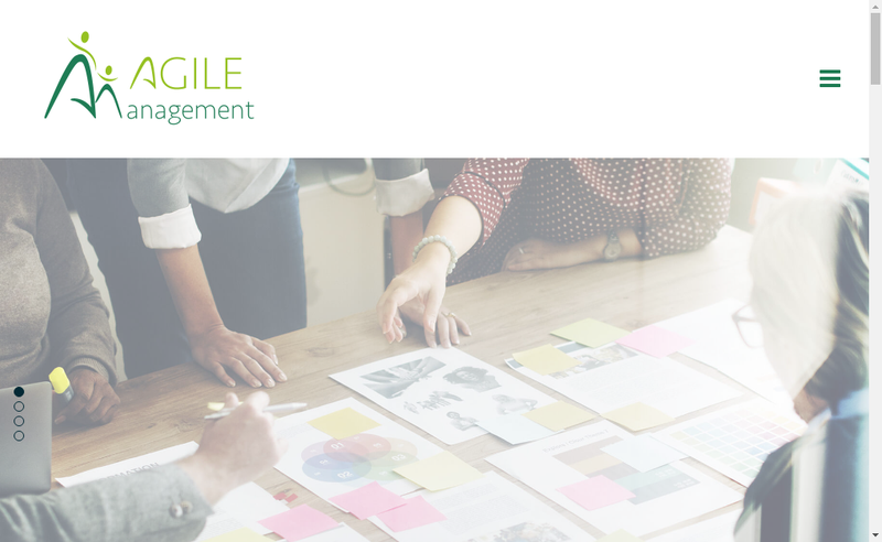 Capture d'écran du site de Agile Management