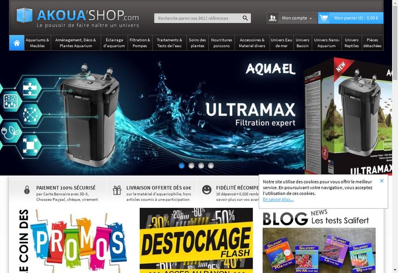 Capture d'écran du site de Akoua Shop