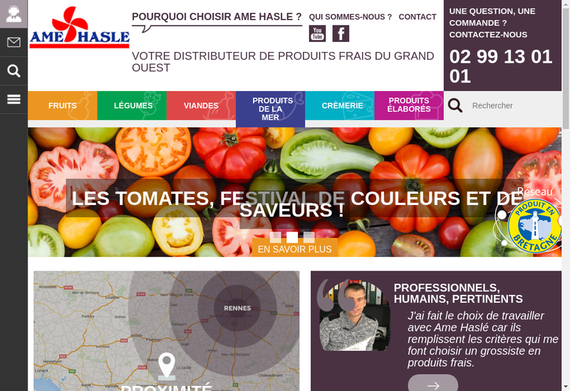 Capture d'écran du site de Ame Hasle