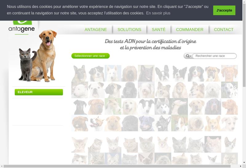 Capture d'écran du site de Antagene