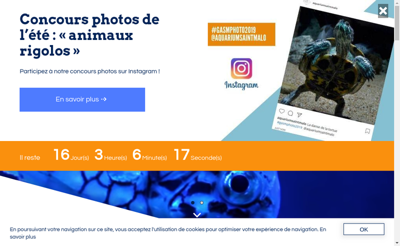 Capture d'écran du site de Aquarium Geant de Saint Malo