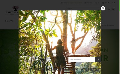 Site internet de Ashana B Paris