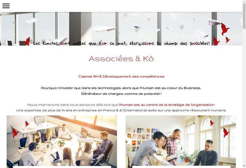 Capture d'écran du site de Associees & Ko Consulting