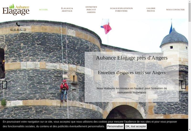 Capture d'écran du site de Aubance Elagage
