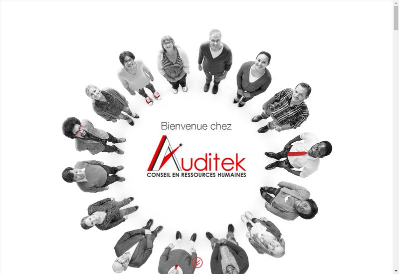 Capture d'écran du site de Auditek