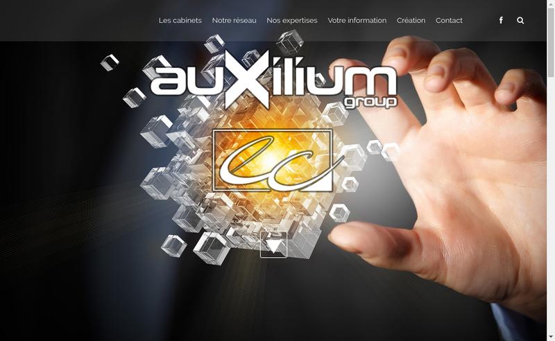 Capture d'écran du site de Audit Gestion Informatique