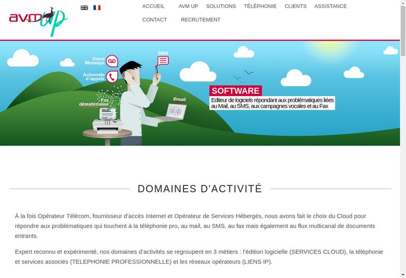 Capture d'écran du site de AVM Informatique