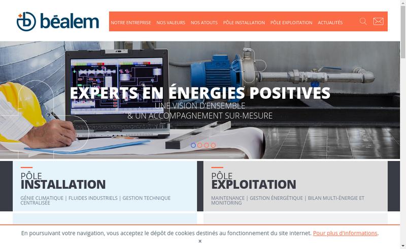 Capture d'écran du site de Entreprise Bealem-Pellequer