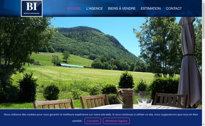 Site internet de Berthet Immobilier