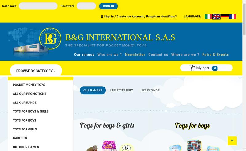 Capture d'écran du site de Bg International