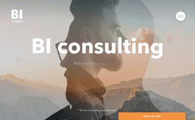Site internet de Bi Consulting