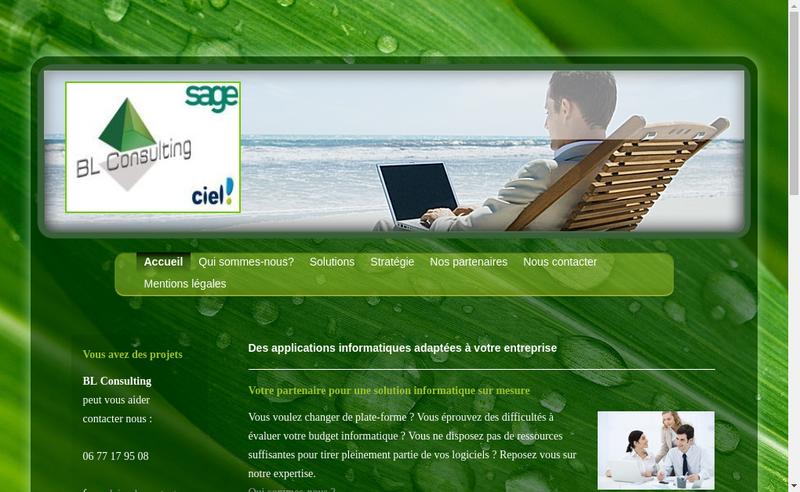 Capture d'écran du site de Bl Consulting