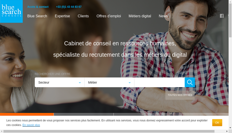 Capture d'écran du site de Blue Search Conseil SARL