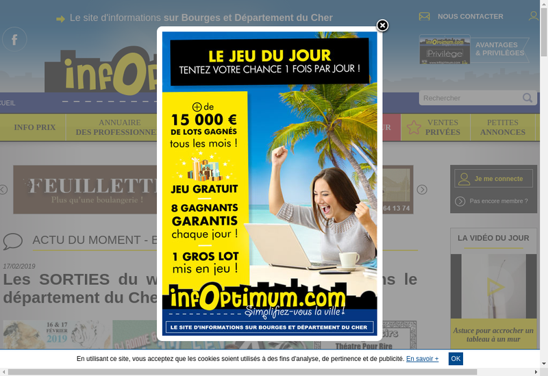 Capture d'écran du site de Infoptimum
