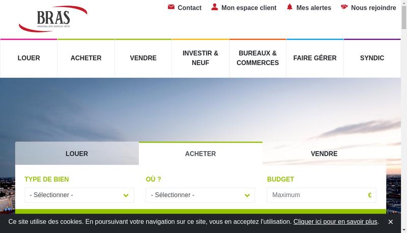 Capture d'écran du site de Cabinet Bras