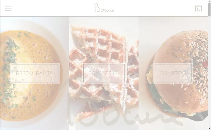Capture d'écran du site de Brasserie Lumiere