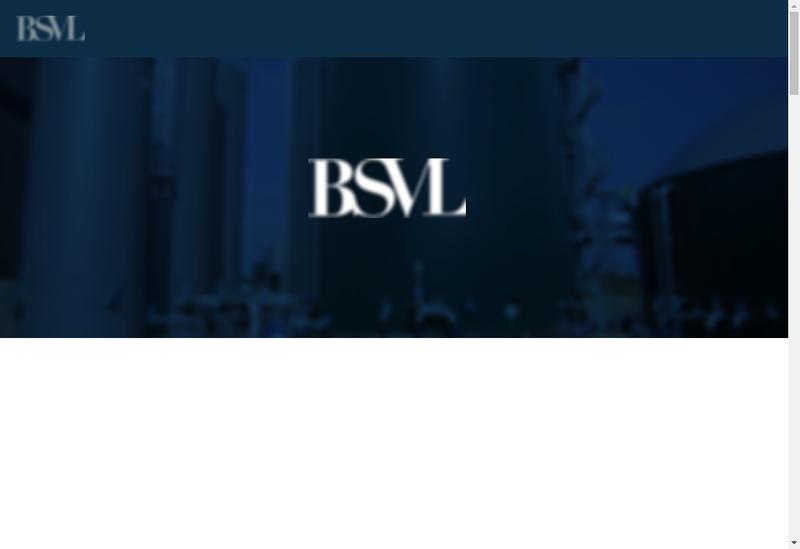 Capture d'écran du site de SAS Bsvl