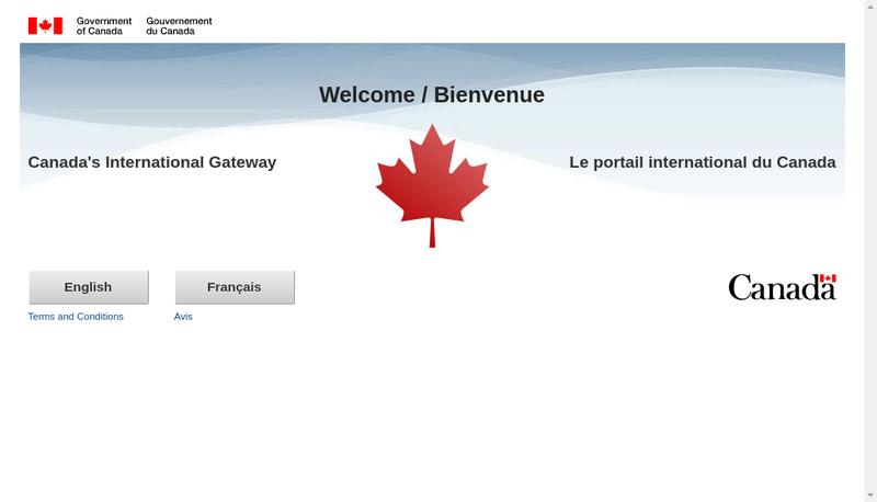 Capture d'écran du site de Sanada International