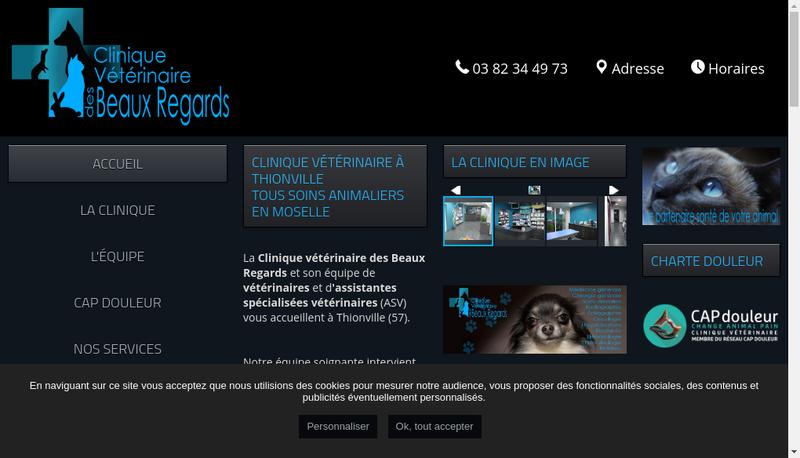 Capture d'écran du site de Mickael Servais