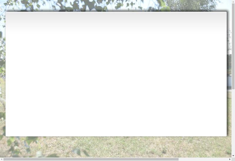 Capture d'écran du site de Creusot Montceau Recyclage